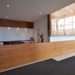 EVOLO 2 : comptoir de réception, panneaux muraux (lambris) et crédence